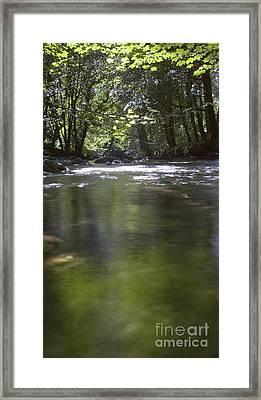 Colligan River 3 Framed Print