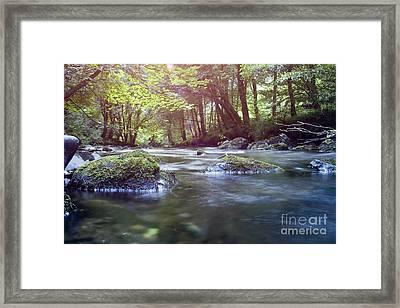 Colligan River Dream 1 Framed Print