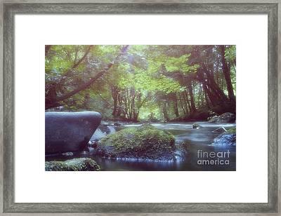 Colligan River Dream 2 Framed Print