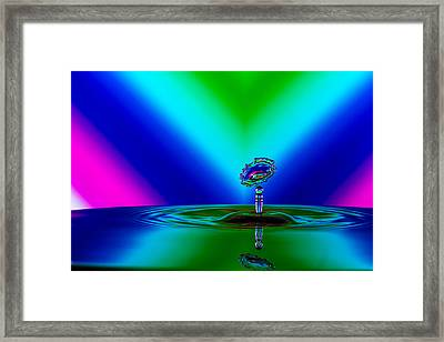 Collision 2016-02 Framed Print by Jay Stockhaus