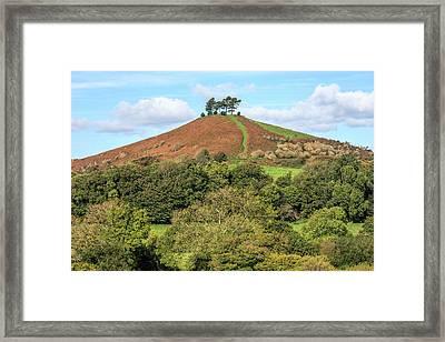 Colmer's Hill - England Framed Print