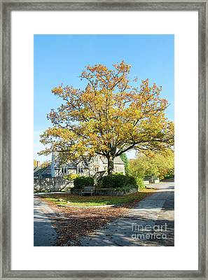 Coln St Dennis Framed Print by Tim Gainey