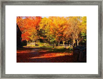 Colonial Fall Colors Framed Print by Jeff Folger