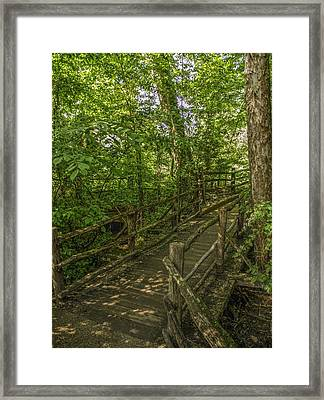 Colonial Williamsburg  V10 Framed Print