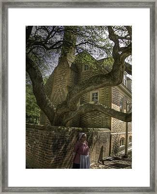 Colonial Williamsburg  V11 Framed Print