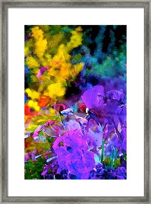 Color 102 Framed Print by Pamela Cooper
