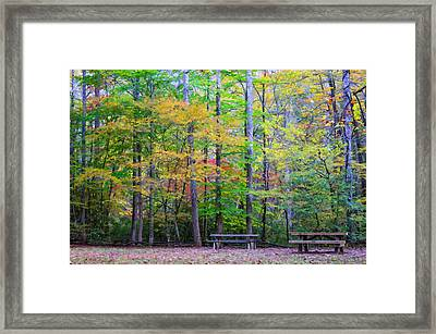 Color Benches Framed Print