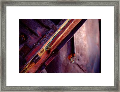 Framed Print featuring the photograph Color Burst.. by Al Swasey