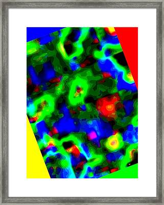 Color Coordinated 1 Framed Print by Will Borden