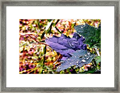 Color Drippings Framed Print
