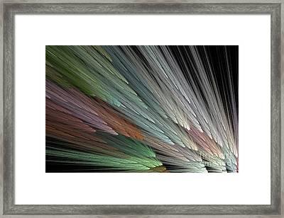 Color Fanning Framed Print by Elizabeth McTaggart