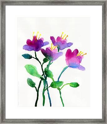 Color Flowers Framed Print