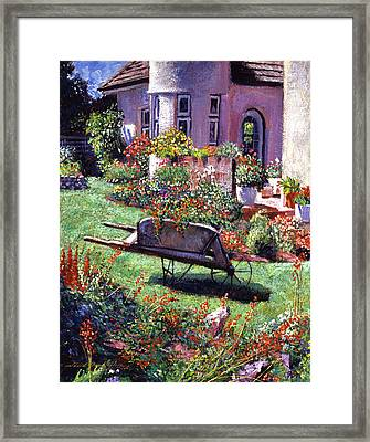 Color Garden Impression Framed Print by David Lloyd Glover