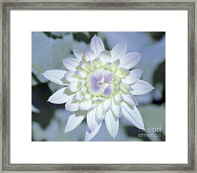 Color Me Framed Print