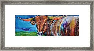 Color Me Texas Framed Print by Patti Schermerhorn