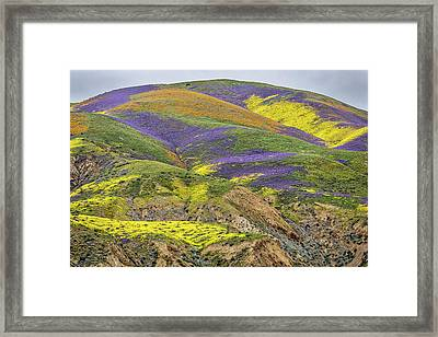 Color Mountain II Framed Print by Peter Tellone