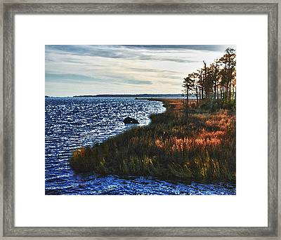 Color Of Weeks Bay Framed Print
