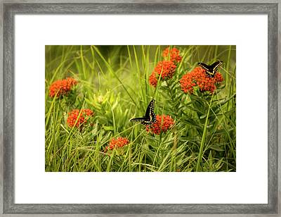 Framed Print featuring the photograph Color On Color by Scott Bean