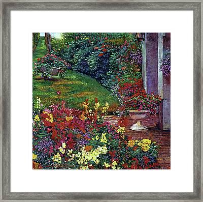 Color Palette Garden Framed Print by David Lloyd Glover