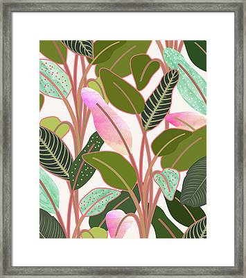 Color Paradise Framed Print