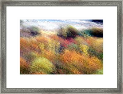 Color Play Framed Print by Robert Shahbazi