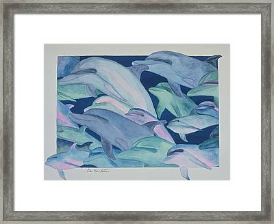 Dolphin Color Rhythms Framed Print
