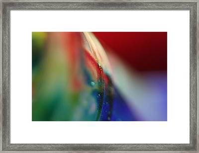 Color Run Framed Print