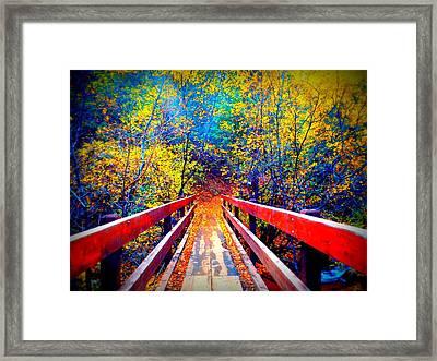 Color Springs Framed Print