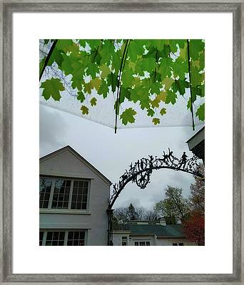 Color To The Rain Framed Print by Jamart Photography