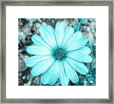 Color Trend Blue Blossom Framed Print