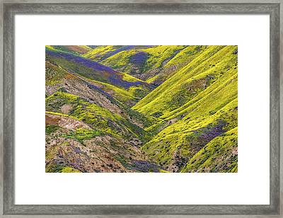 Framed Print featuring the photograph Color Valley by Peter Tellone