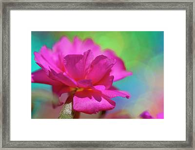 Color2 Framed Print
