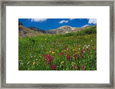 Colorado 14er Handies Peak Framed Print by Aaron Spong