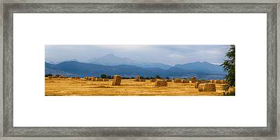 Colorado Agriculture Farming Panorama View Framed Print by James BO  Insogna