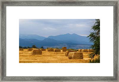 Colorado Agriculture Farming Panorama View Pt 2 Framed Print by James BO  Insogna