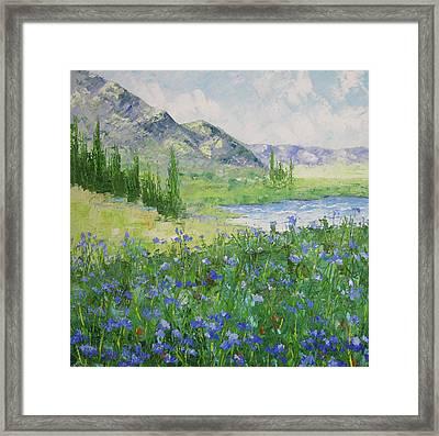 Colorado Alpine Lake Framed Print by Frederic Payet