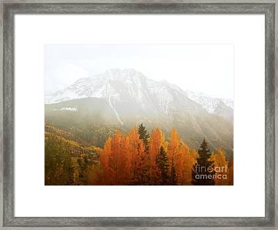 Colorado Aspen Trees Mountain Dreamy Landscape Framed Print by Andrea Hazel Ihlefeld