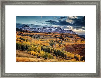 Colorado Autumn Framed Print by Andrew Soundarajan