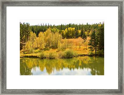 Colorado Autumn Reflections Framed Print by James BO  Insogna
