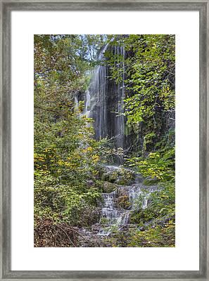 Colorado Bend State Park - Gorman Falls 2 Framed Print