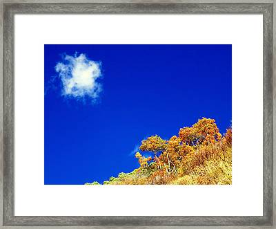 Framed Print featuring the photograph Colorado Blue by Karen Shackles