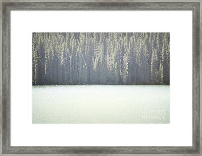 Colorado Dreamy Woodland Lake Trees Framed Print by Andrea Hazel Ihlefeld