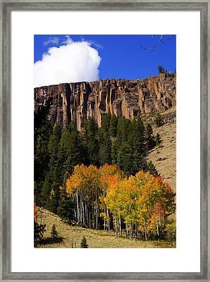 Colorado Fall 4 Framed Print by Marty Koch