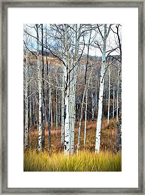 Framed Print featuring the photograph Colorado Fall Aspen by James Steele