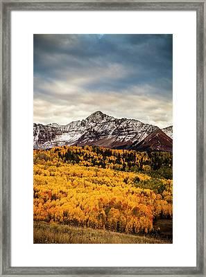 Colorado Gold Framed Print by Andrew Soundarajan
