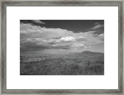 Colorado Grassland Framed Print