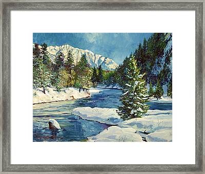 Colorado Pines Framed Print by David Lloyd Glover