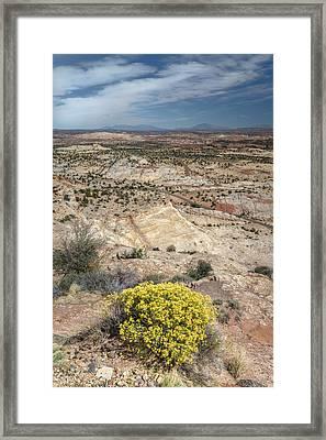 Colorado Plateau Framed Print by Joseph Smith