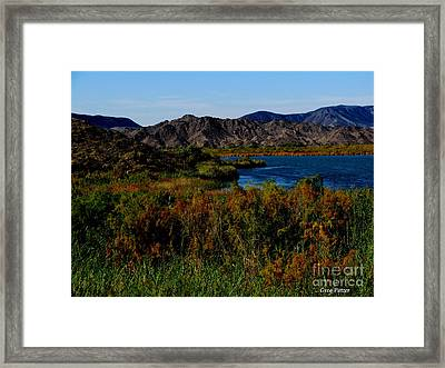Colorado River Framed Print by Greg Patzer
