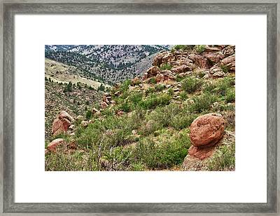 Colorado Rocky Mountains Foothills Framed Print by James BO  Insogna